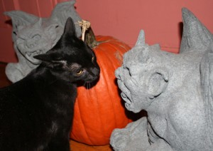 Carl confronts the Gargoyle photo by georgie