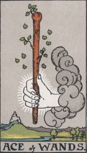 Ace of Wands from the Rider Waite Smith Tarot